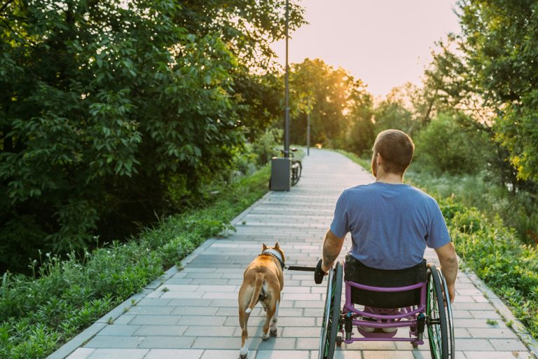 A man in a wheelchair following major trauma meanders along a path with his dog, illustrating the need for compensation and rehabilitation after major trauma