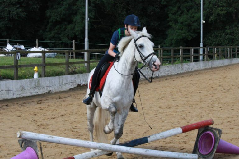 A rider and horse approach a jumping fence illustrating major trauma injuries in horse riding accidents